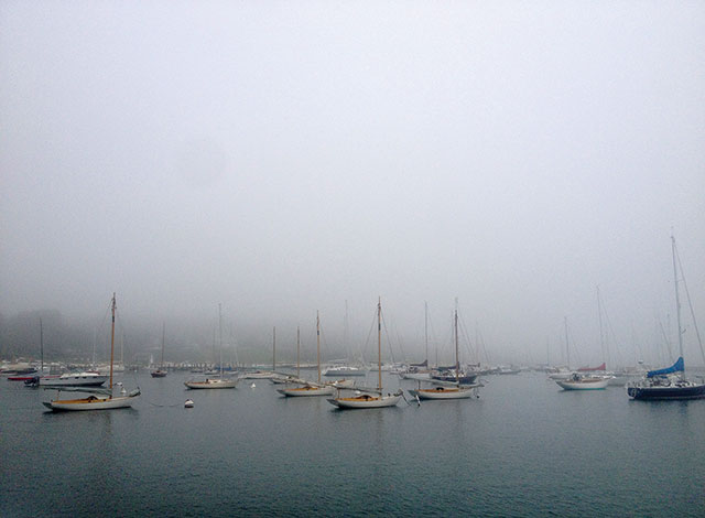Foggy-Day-in-Martha's-Vineyard-by-Leigha-Barker