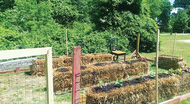 Mixing Bowl- Straw bale garden