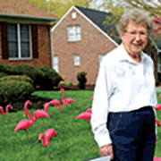 'The flamingos have landed' Alice Foreman turns 90 with a flock of love