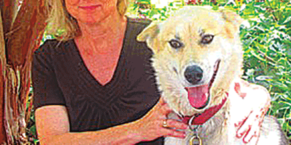 From the Alaskan bush to Chester: Former canine TV star, sled dog finds a home