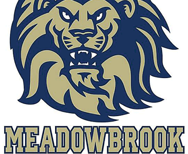 New coach, youth to lead the way at Meadowbrook