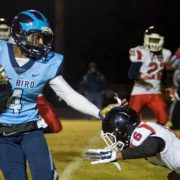 TDHS, Bird, Matoaca win; Meadowbrook falls to P'burg