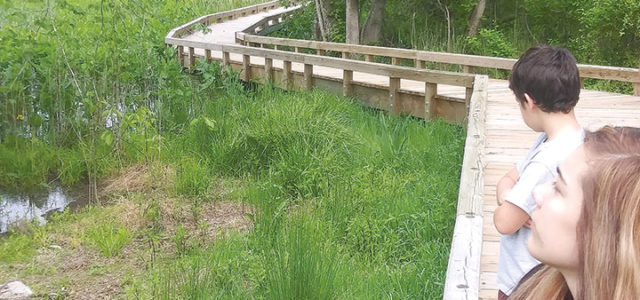 Elevated, floating boardwalk earns Governor's Excellence Award