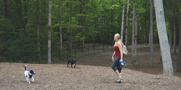 Large canine run opens at Chester Dog Park