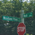 Cash proffers revised for Nash Road subdivision