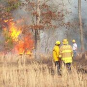 Burn ban in effect, fines imposed